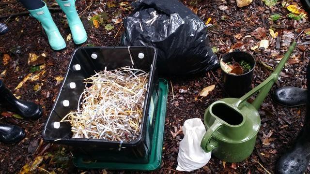 Añadir las hojas, heno para las camas para llenar la mitad de la basura. Añadir un poco de papel picado, pero sólo si se ha impreso con tinta vegetal. Periódicos Vancouver utilizan tintas vegetales.