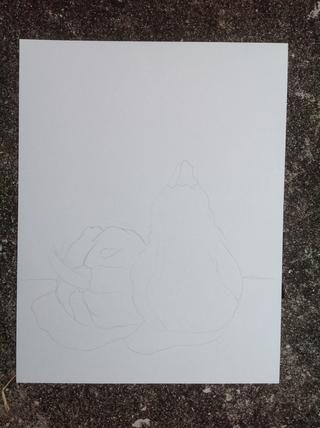 Crear un bosquejo contorno luz de tu naturaleza muerta. Don't forget to draw in your shadow shapes.
