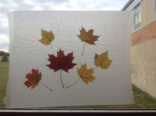 Cómo crear hojas de papel de cera