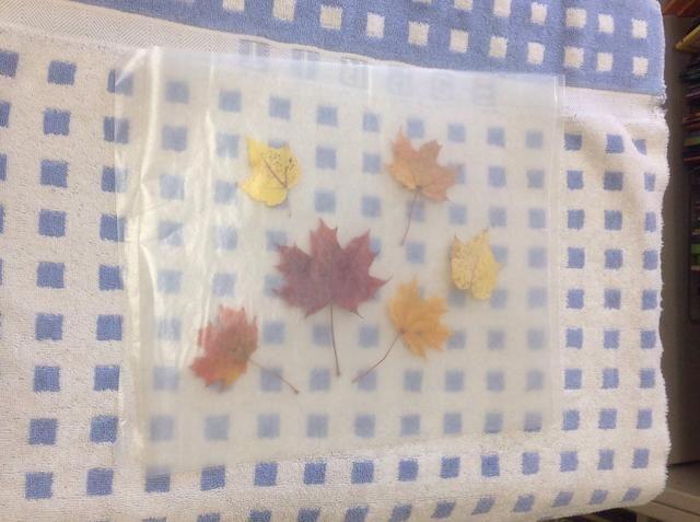 Coloque el papel de cera en la parte superior de las hojas.