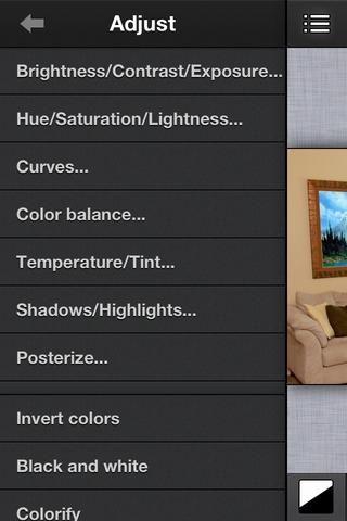 Vaya al menú Ajustar y seleccione el brillo / contraste / exposición.