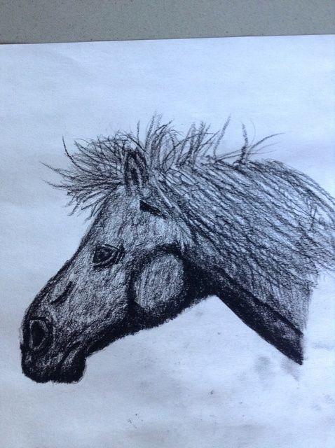 Cómo dibujar un fácil Principiante Caballo