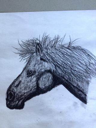 ¡Oh si! También hice esta foto en carbón de leña! Ello's an Icelandic horse