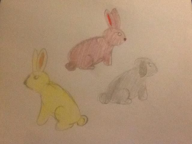Ahora ha finnished su conejo. Usted también puede hacer lop el conejo de orejas y todo tipo de otros! Sólo tiene que seguir estos sencillos pasos!