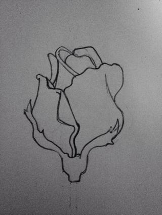 Dibuja otra joroba (por cierto jorobas son pétalos) sobre ella.