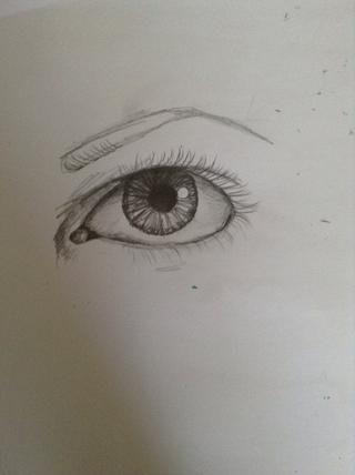 Dibuja la ceja. Se debe comenzar realmente grande y disminuir a cabo. Algunas cejas son más cuadrado, mientras que otros son más redondo.