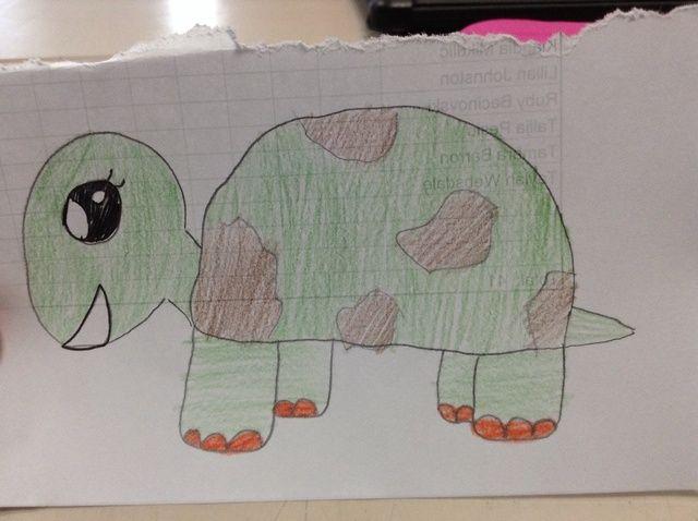 Cómo dibujar una tortuga ??????
