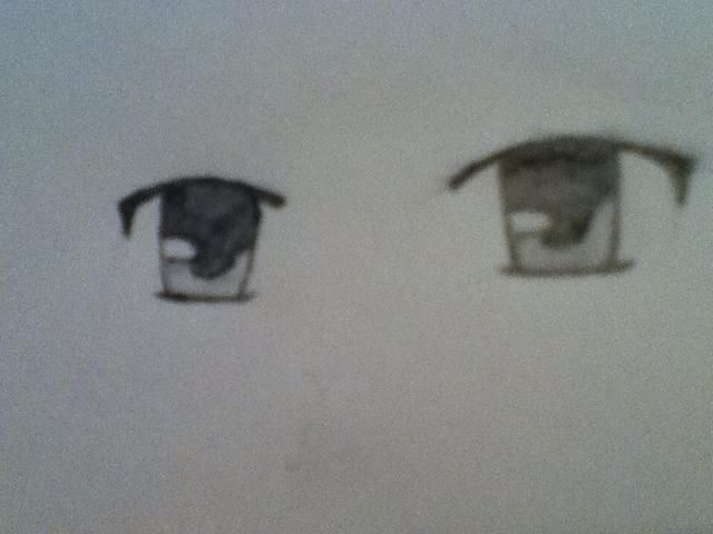 Don't forget to give your eye a partner! I advise putting the eye you just drew on the right, but it's up to you! The next picture shows the eyes better though.