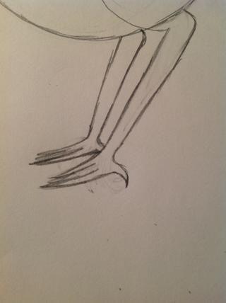 Dibuja grandes pies, garras