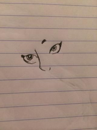Dibuja los ojos y la nariz primero, hace que todo lo demás sea más fácil. (: