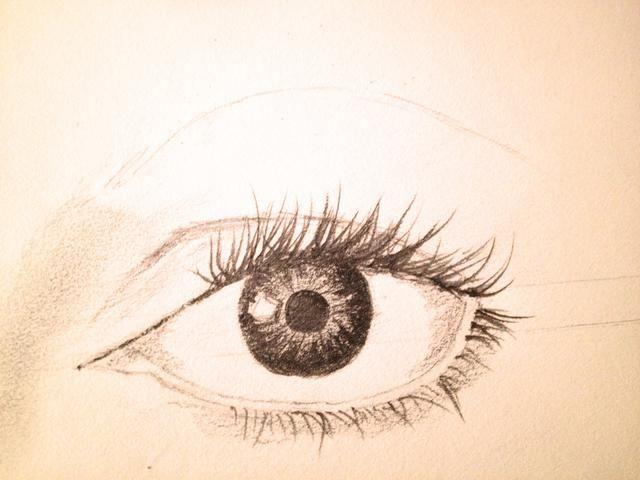 Dibuja otra línea delgada encima de su pliegue que serviría como modelo para sus cejas.
