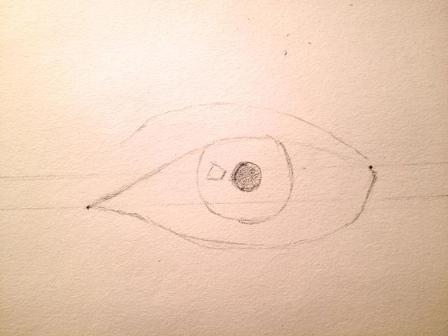 Dibuja un pequeño cuadrado o un círculo a ambos lados de los pequeños círculos (iris). Esto no se debe incluir cuando la sombra.
