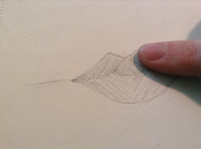 Ahora la sombra todo el labio en diferentes direcciones (con la línea media) y las manchas con el dedo