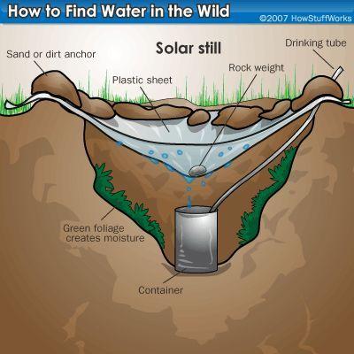 Fotografía - ¿Cómo encontrar el agua en la naturaleza