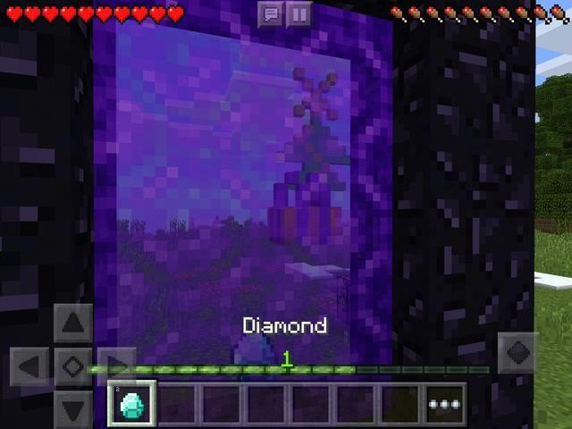 La cantidad de diamantes que a través del portal debe salir del portal cuando vuelva en el juego.