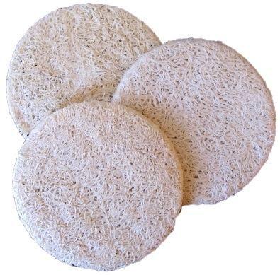 Coloque el azúcar en la parte superior de la esponja mojada.