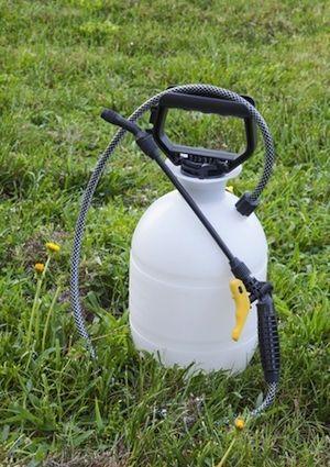 ¿Cómo deshacerse de garranchuelo - Herbicida