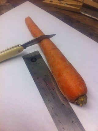 Cortar la zanahoria para 4 o 5 pulgadas de largo.
