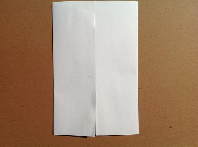 Doble el borde izquierdo hasta el pliegue central. Esto también se conoce como un pliegue armario.
