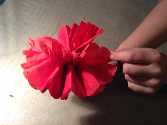 La celebración de la madre en la parte inferior, tire de cada capa de papel de seda de la concertina se pliega hacia el centro. Tenga mucho carful al hacer esto de no rasgar cualquier del papel tisú.