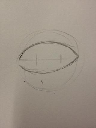 Esquema de la forma básica del ojo. Algo así parece una almendra.