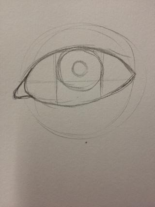 Añadir el contorno de la pupila.
