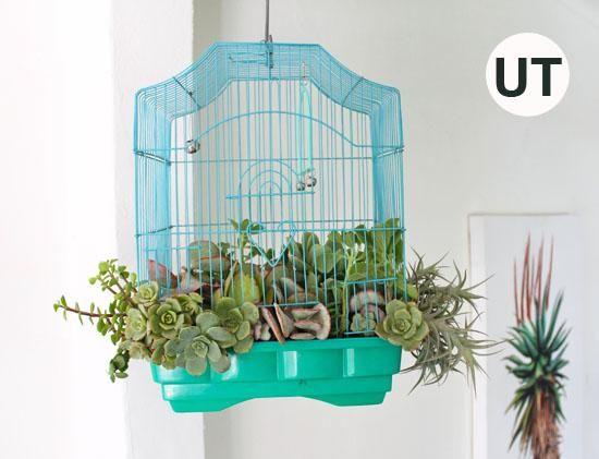 Cuando su maceta jaula es completa colgar con un gancho de techo. Para visitar las ideas más impresionantes upcycling UpcycleThat.com