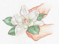 Forma un collar alrededor de la flor con las hojas desechadas.