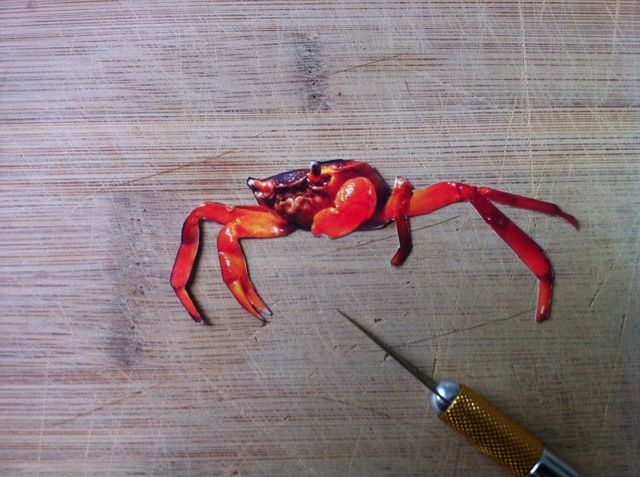 aquí's a finished clipping... Crabs!!!