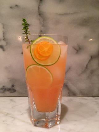 Paso 8: agitar suavemente contenido de su copa de cóctel, si es necesario. A continuación, sentarse, trago y disfrutar de su Gin perfectamente elaborada y flor de saúco galgo!