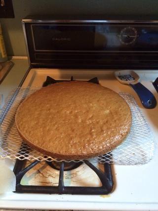 Deje que el pastel de reposar durante 10 minutos en la sartén y luego la lleva a cabo y dejar que se enfríe completamente en una rejilla