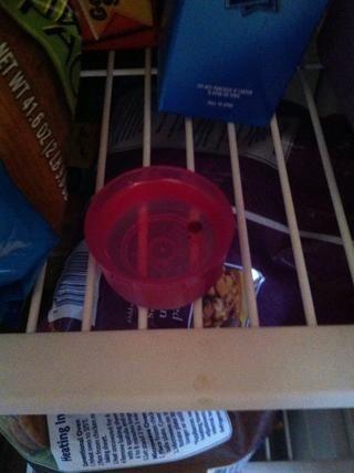 Ahora ponga en un recipiente y colocar en el congelador