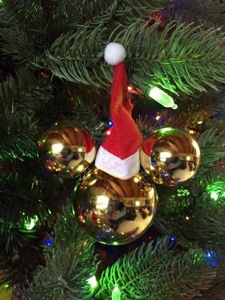 Un sombrero de Santa!