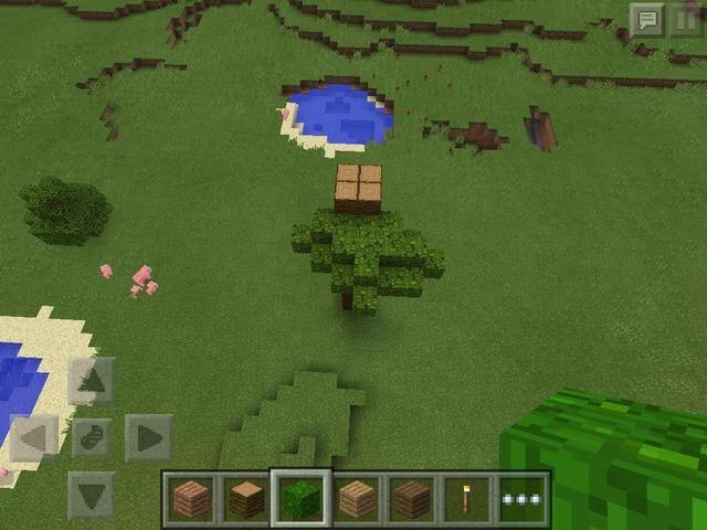 Añadir las hojas de modo que la madera está cubierta