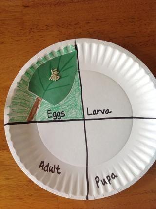 Pegue la hoja con arroz en la sección de huevos. Usando lápices de color verde de fondo y añadir un tallo de la hoja.