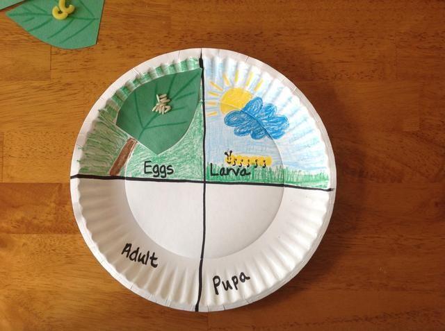 El uso de lápices de colores, dibujar una oruga, la hierba, y el fondo en la sección de larva.