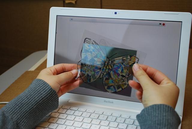 Coloca el papel polarizador delante de su mariposa. Verá colores de inmediato!