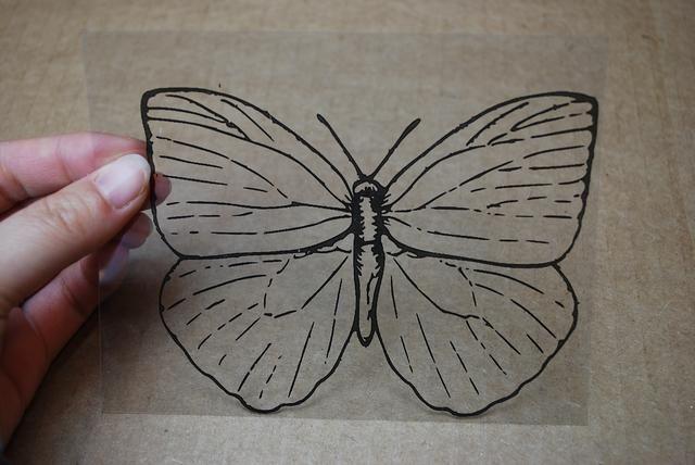 Encuentra una imagen monocroma (blanco y negro) de una mariposa que te guste. Imprimirlo en una película transparente que funciona en su impresora / copiadora. Imprimimos 4 a un 8 1/2