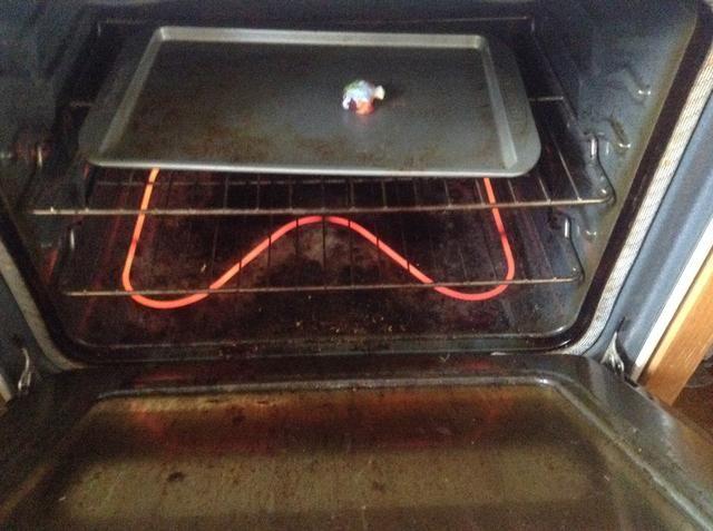 Sr. Tortuga en el horno!