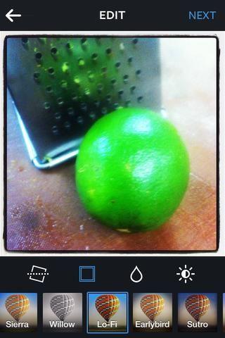 La ralladura de limón y el jugo de la rejilla de aterrizaje.