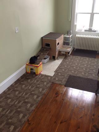 El producto terminado consiguiendo su inspección de la casa.