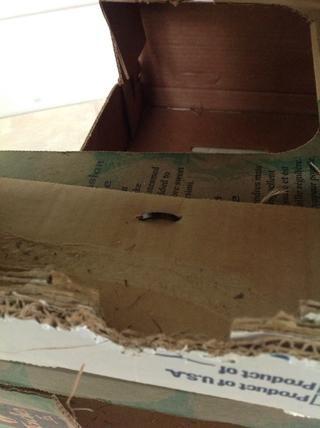 A cerca de las bridas que sujetan las cajas juntas.