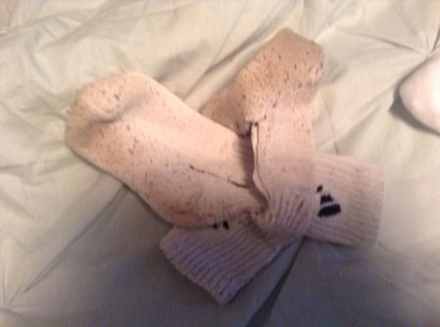Por entrelazando los calcetines me parece que dura más tiempo para nuestro amigo peludo Stella. Ella es capaz de destrucción masiva ... Las paredes, espejos de coche, todos los alimentos, etc. además de que es más divertido para el cachorro.