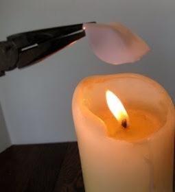 Mantenga la punta del pétalo con las pinzas y calentar el lugar en la cuchara en el que el mango era hasta que comienza a derretirse. Colóquelo en la rosa, espere hasta que se enfríe y se pega.