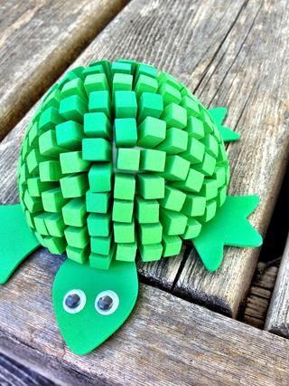 me gustan las tortugas