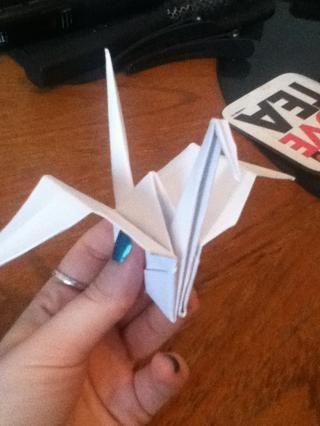 Tire de las aletas para que se vieran como alas!