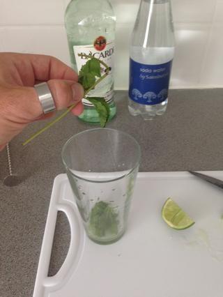 Añadir las hojas de menta enteros. Don't use the stems. I usually use between 6 and 9.