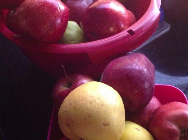 Cómo hacer de Apple especias Harina de avena en la receta de olla de barro