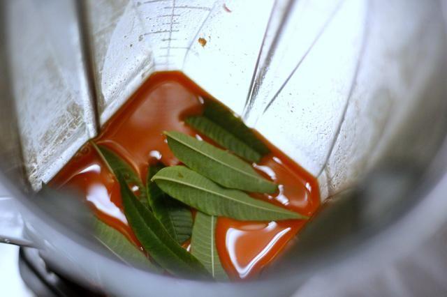 Ahora se mezclan la salsa de zanahoria: butternut 2c jugo de calabaza zanahoria 4c jugo 3T alta calidad vinagre Champagne 3T miel cruda 3 suaves pimientos 2c hojas de verbena de limón.