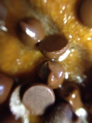 Espere un par de minutos hasta que las chispas de chocolate obtener toda Melty ... mmmm chocolate ...